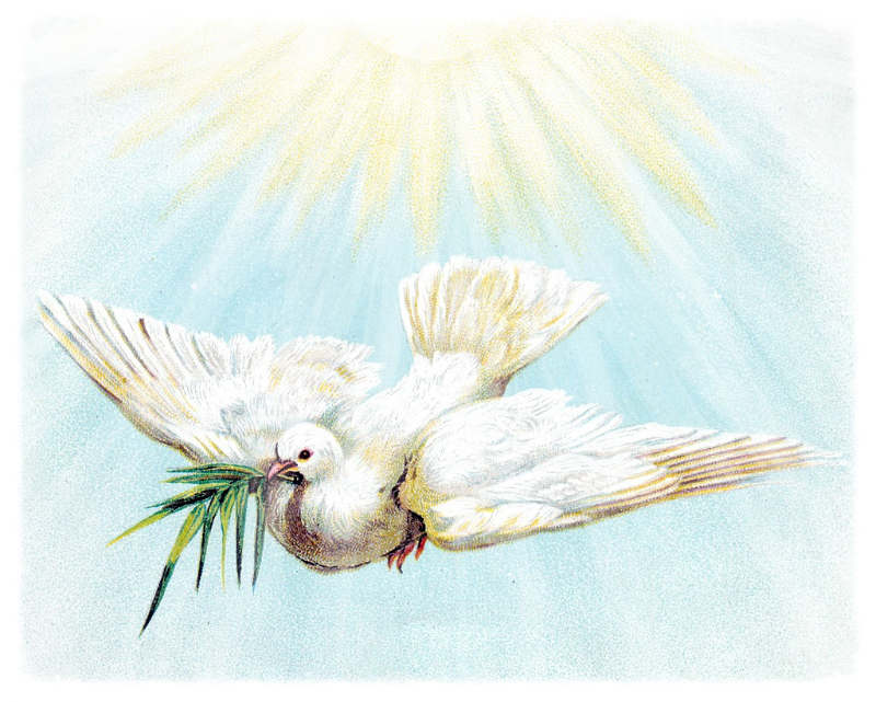 Holy Spirit Bible Study
