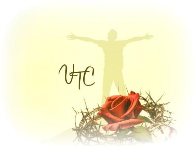 Victorious Bible Studies Healing Scripture